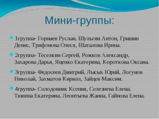 Мини-группы: 1группа- Горнаев Руслан, Шульгин Антон, Гришин Денис, Трифонова