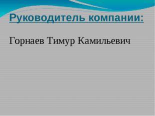 Руководитель компании: Горнаев Тимур Камильевич