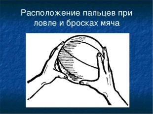 Расположение пальцев при ловле и бросках мяча