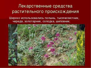 Лекарственные средства растительного происхождения Широко использовались полы