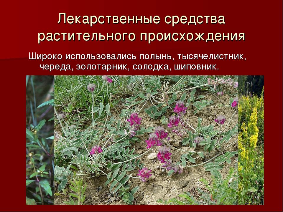 Лекарственные средства растительного происхождения Широко использовались полы...