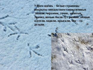 Утром идёшь – белые страницы покрыты множеством таинственных знаков, черточ
