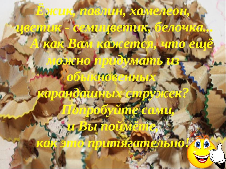 Ёжик, павлин, хамелеон, цветик - семицветик, белочка... А как Вам кажется, ч...