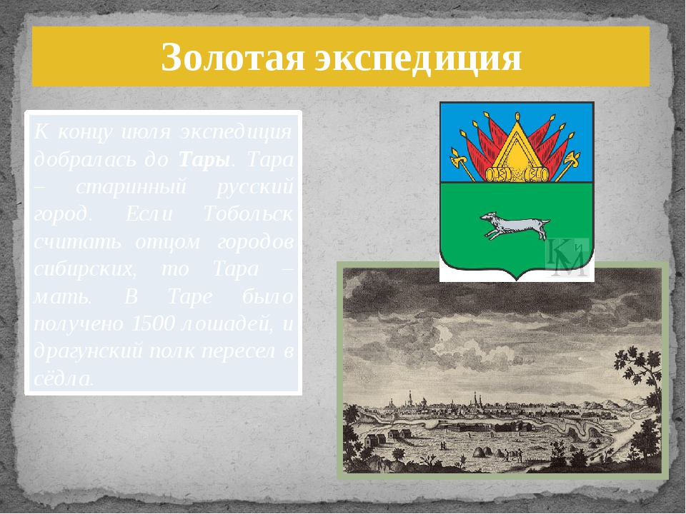 Золотая экспедиция К концу июля экспедиция добралась до Тары. Тара – старинны...