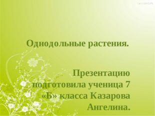Однодольные растения. Презентацию подготовила ученица 7 «Б» класса Казарова А