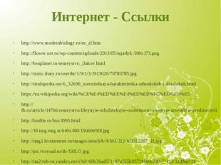Интернет - Ссылки http://www.modernbiology.ru/ur_zl.htm http://flower.net.ru/