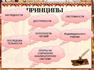 ПРИНЦИПЫ НАГЛЯДНОСТИ СИСТЕМНОСТИ ДОСТУПНОСТИ ПОСЛЕДОВА-ТЕЛЬНОСТИ Индивидуальн