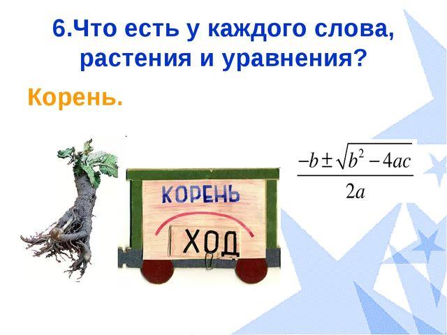 6.Что есть у каждого слова, растения и уравнения? Корень.