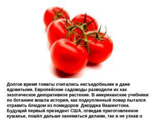 Долгое время томаты считались несъедобными и даже ядовитыми. Европейские садо