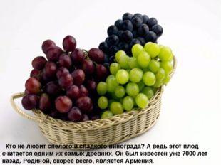 Кто не любит спелого и сладкого винограда? А ведь этот плод считается одни