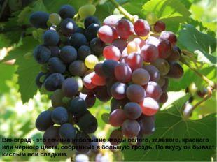 Виноград - это сочные небольшие ягоды белого, зелёного, красного или чёрного
