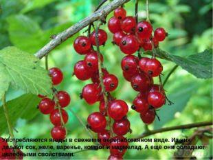 Употребляются ягоды в свежем и переработанном виде. Из них делают сок, желе,