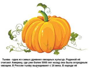 Тыква- одна из самых древних овощных культур. Родиной её считают Америку,