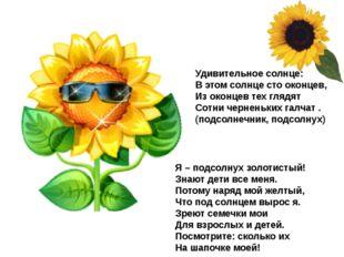 Удивительное солнце: В этом солнце сто оконцев, Из оконцев тех глядят Сотни ч