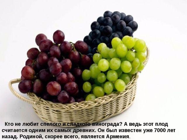 Кто не любит спелого и сладкого винограда? А ведь этот плод считается одни...
