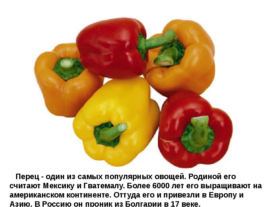 Перец- один из самых популярных овощей. Родиной его считают Мексику и Гва...