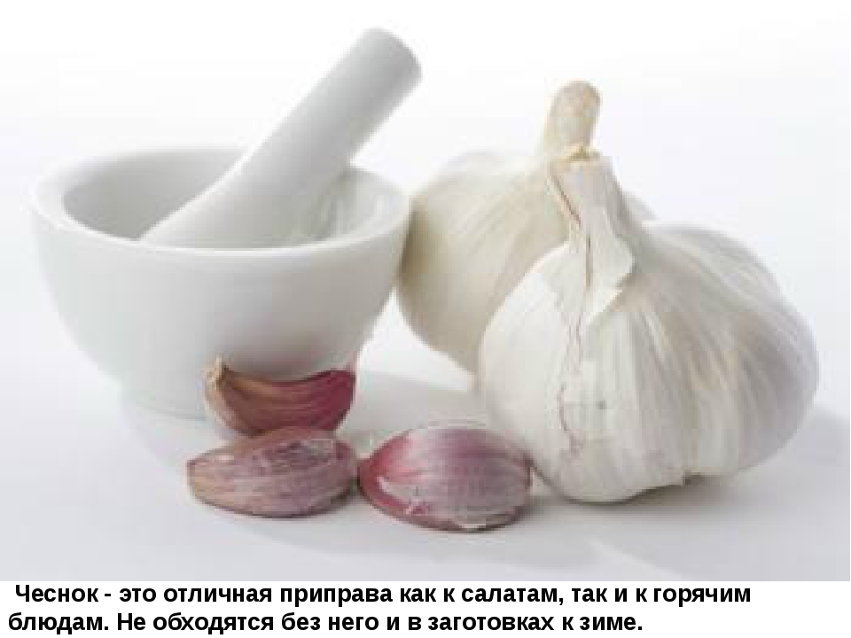 Чеснок - это отличная приправа как к салатам, так и к горячим блюдам. Не обх...