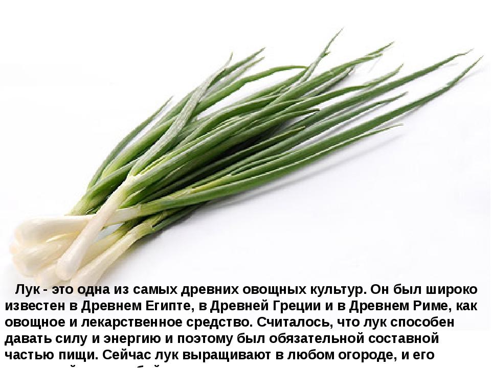 Лук- это одна из самых древних овощных культур. Он был широко известен в...