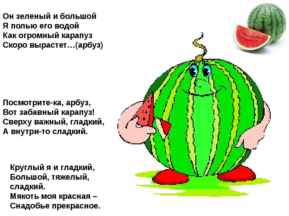 Он зеленый и большой Я полью его водой Как огромный карапуз Скоро вырастет…(а...