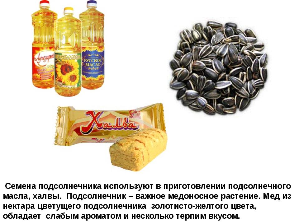 Семена подсолнечника используют в приготовлении подсолнечного масла, халвы....