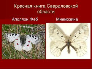 Красная книга Свердловской области Аполлон Феб Мнемозина