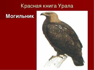 Красная книга Урала Могильник