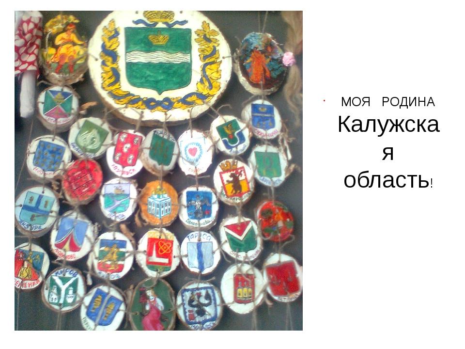 МОЯ РОДИНА Калужская область!