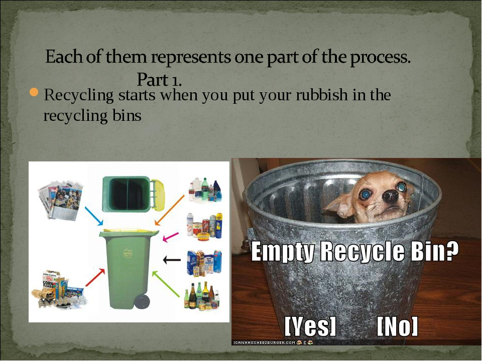 Recycling starts when you put your rubbish in the recycling bins