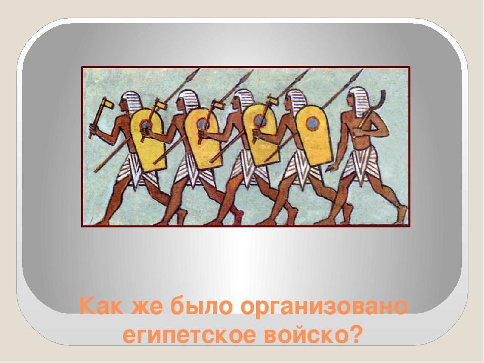 Как же было организовано египетское войско?