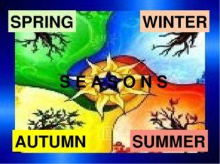 SUMMER SPRING AUTUMN WINTER S E A S O N S