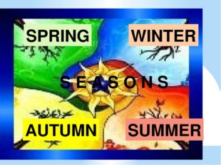 SUMMER SPRING AUTUMN WINTER S E A S O N S