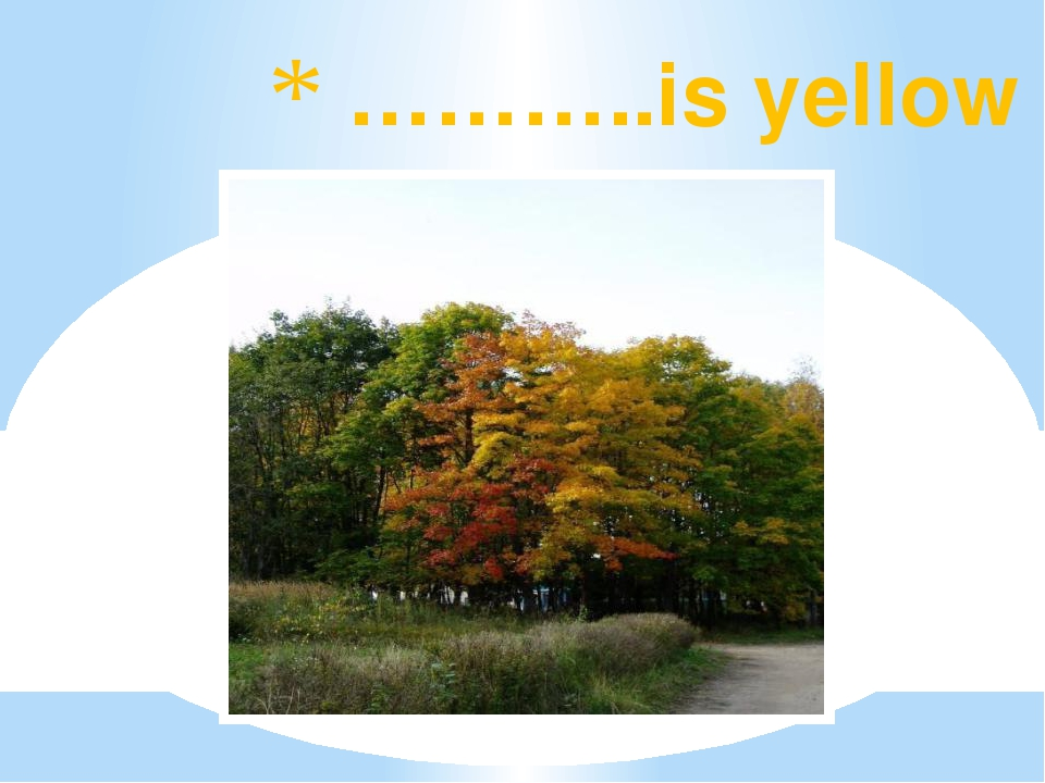 ………..is yellow