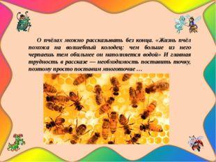 О пчёлах можно рассказывать без конца. «Жизнь пчёл похожа на волшебный колод