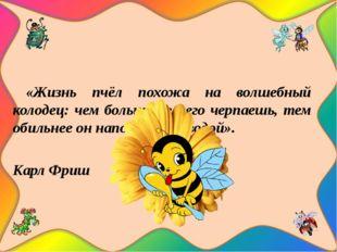 «Жизнь пчёл похожа на волшебный колодец: чем больше из него черпаешь, тем об