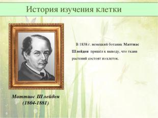 Маттиас Шлейден (1804-1881) В 1838 г. немецкий ботаник Маттиас Шлейден пришёл
