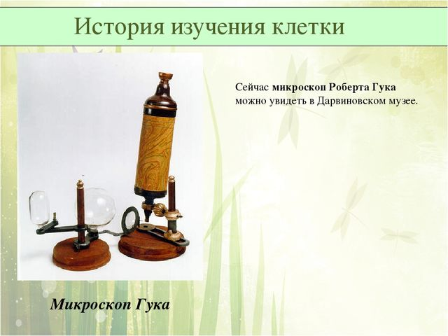Микроскоп Гука Сейчас микроскоп Роберта Гука можно увидеть в Дарвиновском муз...