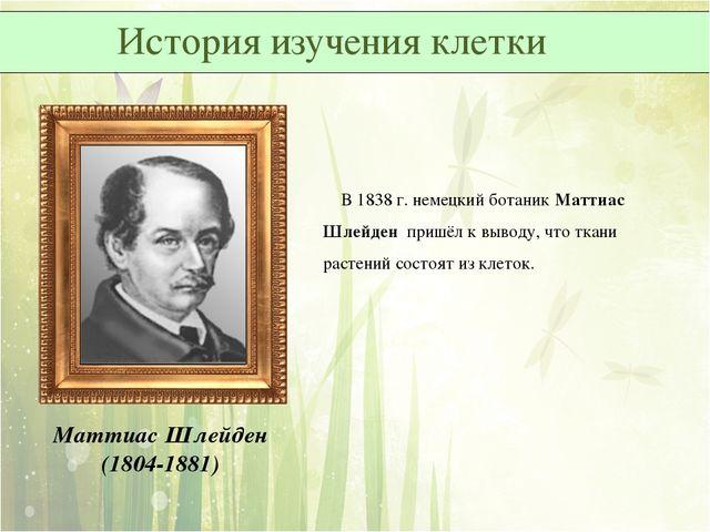 Маттиас Шлейден (1804-1881) В 1838 г. немецкий ботаник Маттиас Шлейден пришёл...