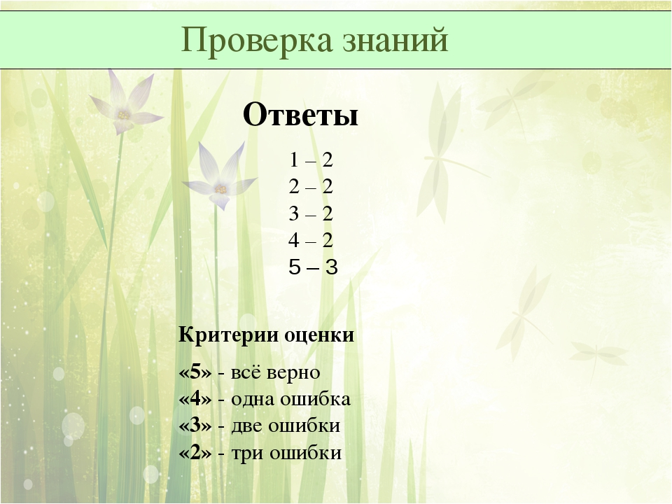 Проверка знаний Ответы 1 – 2 2 – 2 3 – 2 4 – 2 5 – 3 Критерии оценки «5»...