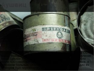 Аушвиц 1 3 сентября 1941 года по приказу оберштурмфюрера СС Карла Фрицша был