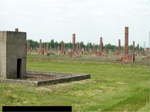 Руины бараков. Аушвиц 2 (Биркенау)