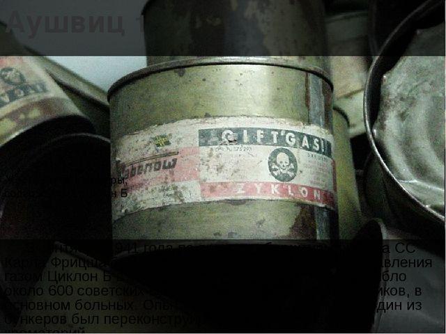 Аушвиц 1 3 сентября 1941 года по приказу оберштурмфюрера СС Карла Фрицша был...