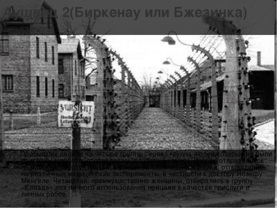 Аушвиц 2(Биркенау или Бжезинка) Прибывших делили на четыре группы:первая груп...
