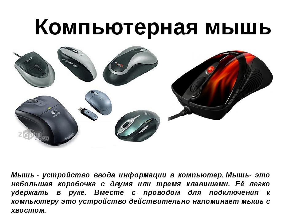 Компьютерная мышь Мышь- устройство ввода информации в компьютер.Мышь- это н...