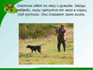 Охотник идёт по лесу с ружьём. Зайцы, медведи, лисы прячутся от него в норки,