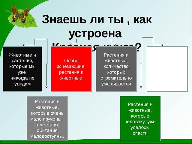 Знаешь ли ты , как устроена Красная книга? Животные и растения, которые мы уж...