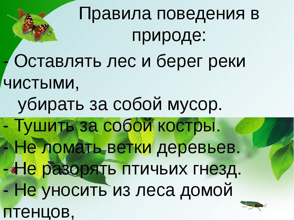 Правила поведения в природе: - Оставлять лес и берег реки чистыми, убирать за...
