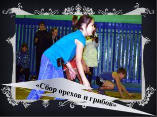 «Сбор орехов и грибов»