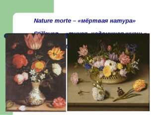 Nature morte – «мёртвая натура» Stilleven – «тихая, недвижная жизнь» Still-l