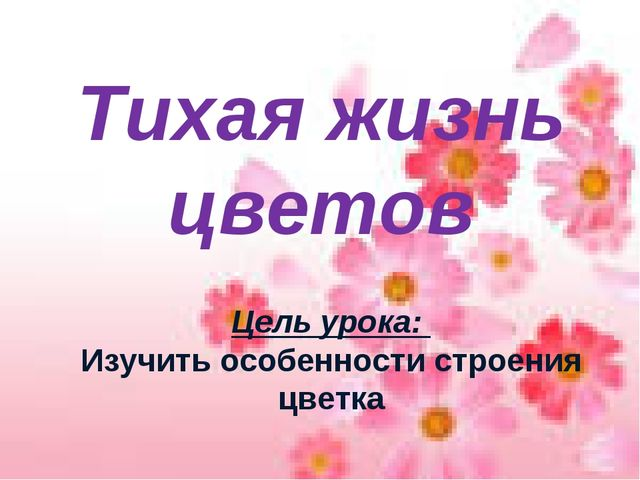 Тема: Цветок Тихая жизнь цветов Цель урока: Изучить особенности строения цветка