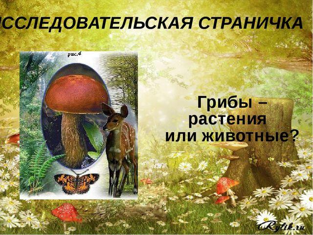Грибы – растения или животные? ИССЛЕДОВАТЕЛЬСКАЯ СТРАНИЧКА